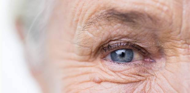 5 ways to slow Age-Related Macular Degeneration